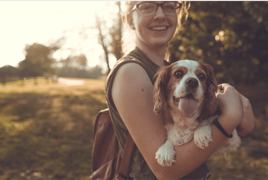 10 Top Tips for Moving Home With Pets